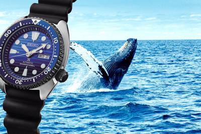 Seiko Automatik SRPC91K1 / SRPC91 Blue Ocean Turtle – Bild 1
