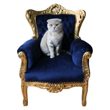 Chairs for children Bedroom Unique Navy Blue solid wood gold-leafed frame – image 2