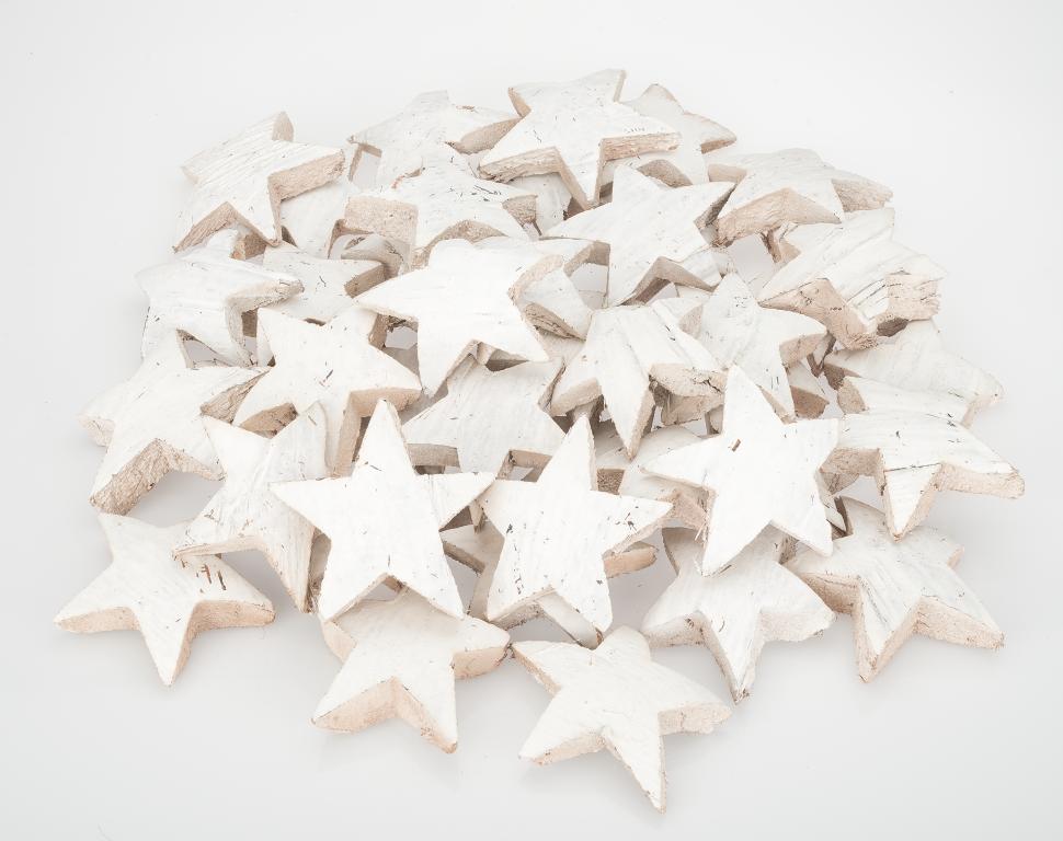 Kokos Stern XL weiß 50 Stk. ca. 10cm
