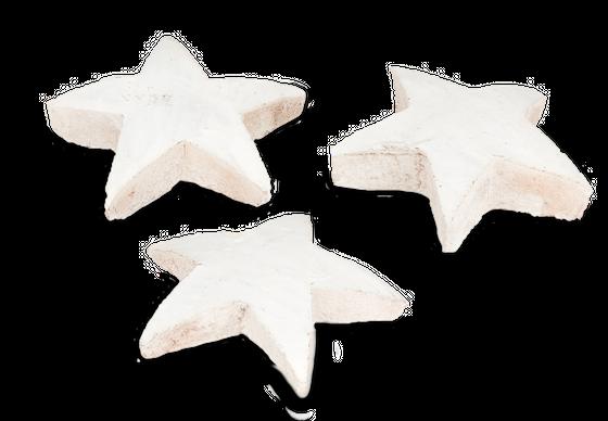 Kokos Stern XL weiß 50 Stk. ca. 10cm  – Bild 3