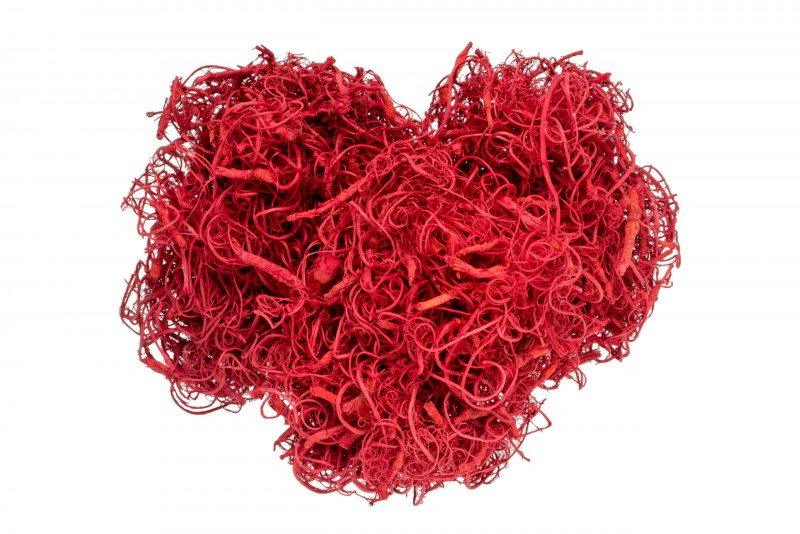 Curly Moos rot 50g