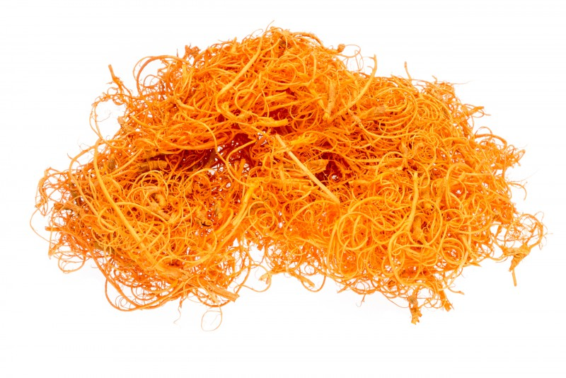 Curly Moos orange 50g