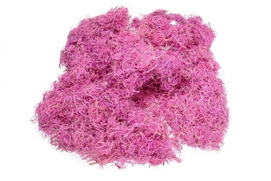 Curly Moos pink 50g – Bild