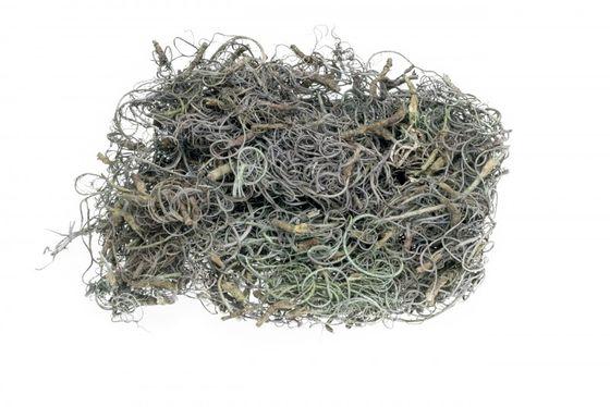 Curly Moos grau 50g – Bild