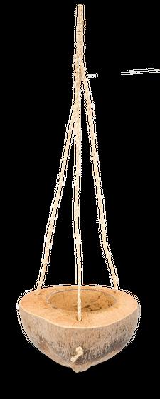 Blumenampel Deko Kokosnuss halbiert – Bild
