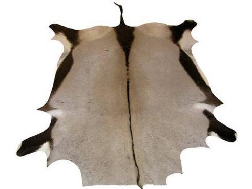 Oryxfell ca. 140cm | Antilopenfell