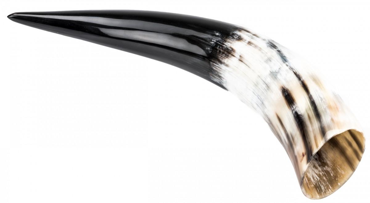 Trinkhorn 0,3 Liter