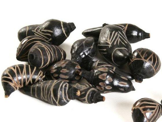 Baobab mini schwarz ca. 3-6cm – Bild