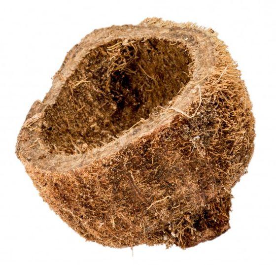 Sahel Apfel geschält ca.4-5cm – Bild 1