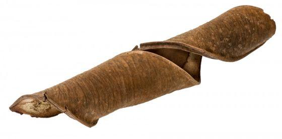 Panga Panga Schote ca. 15-20cm – Bild 1