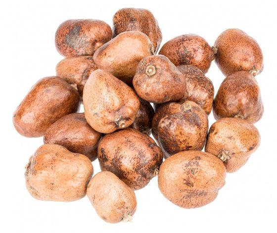 Steinfrucht 1kg ca. 5-8cm | Makalani Nuss – Bild 1