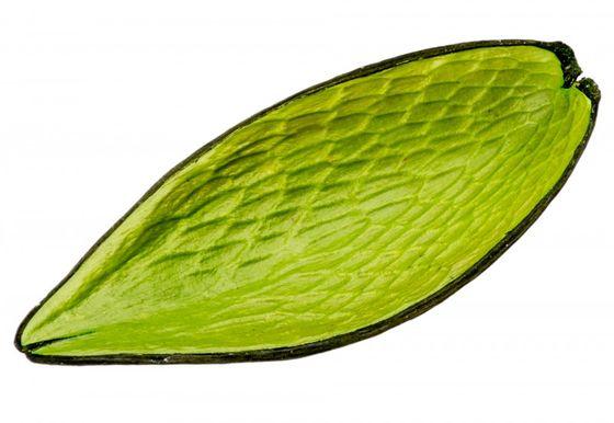 Canoinha apfelgrün – Bild