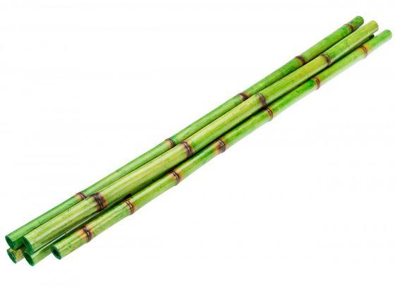 Tiger Bambus grün ca.90cm 5 Stück – Bild