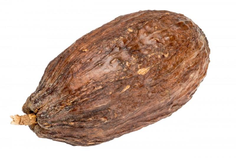Kakaoschote braun ca. 10cm