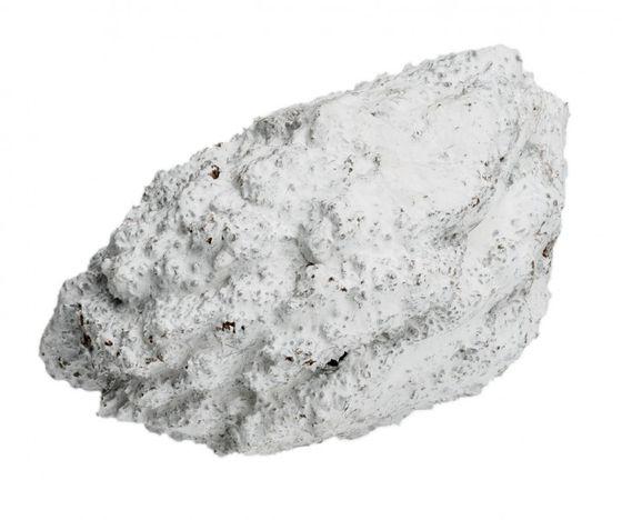 Panari weiß ca. 7-9cm – Bild 2