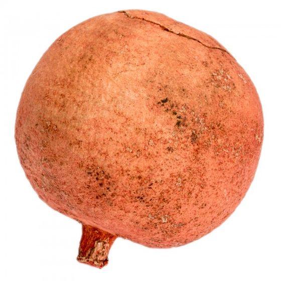 Melone rot ca. 10cm | Deko Melone – Bild