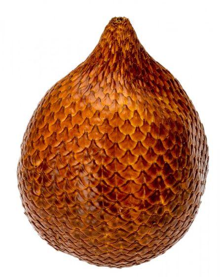 Snakefruit getrocknet ca. 5cm | Salacca zalacca – Bild