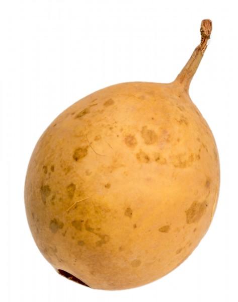 Passion Frucht gelb 6-7cm