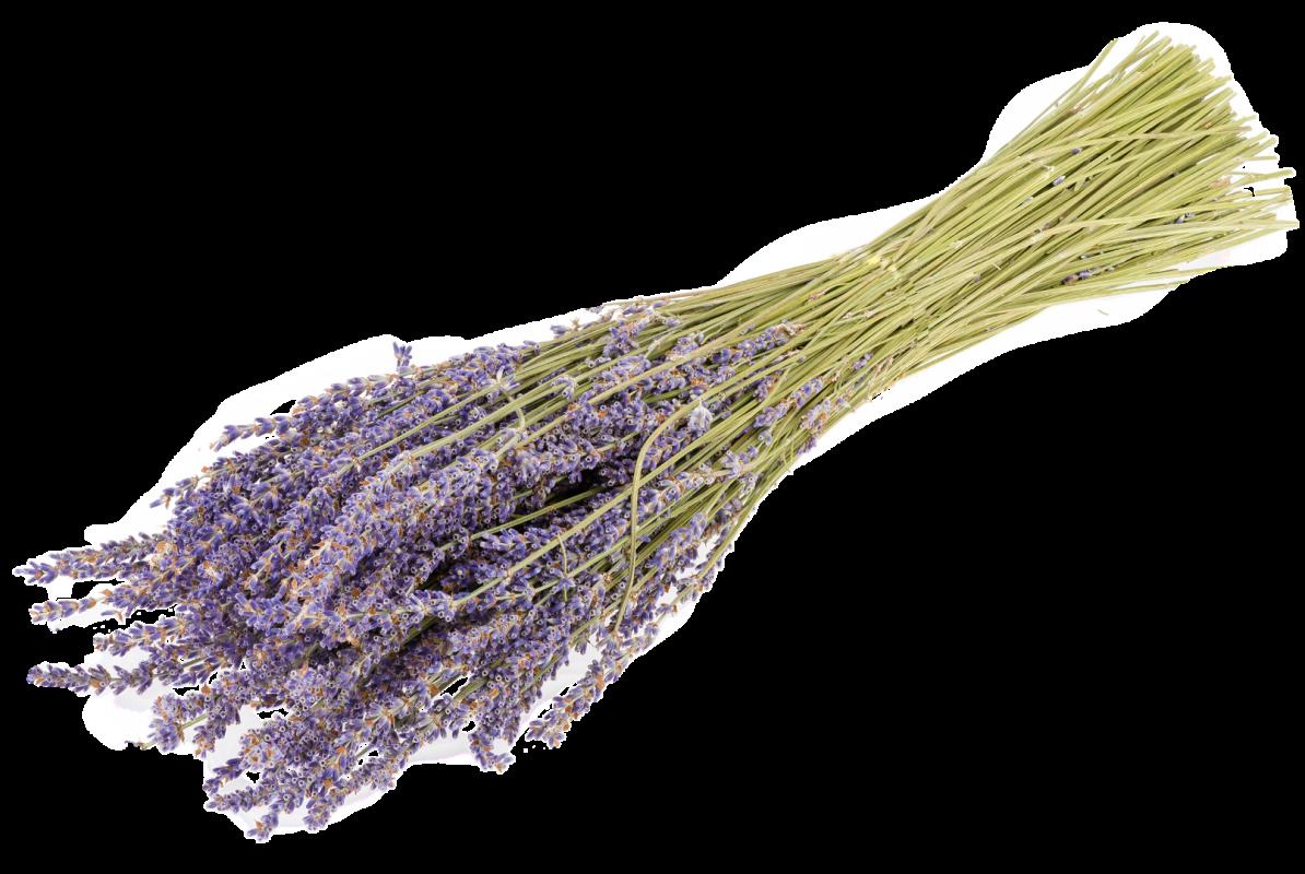 Lavendel Strauss 100g | Lavendelbund