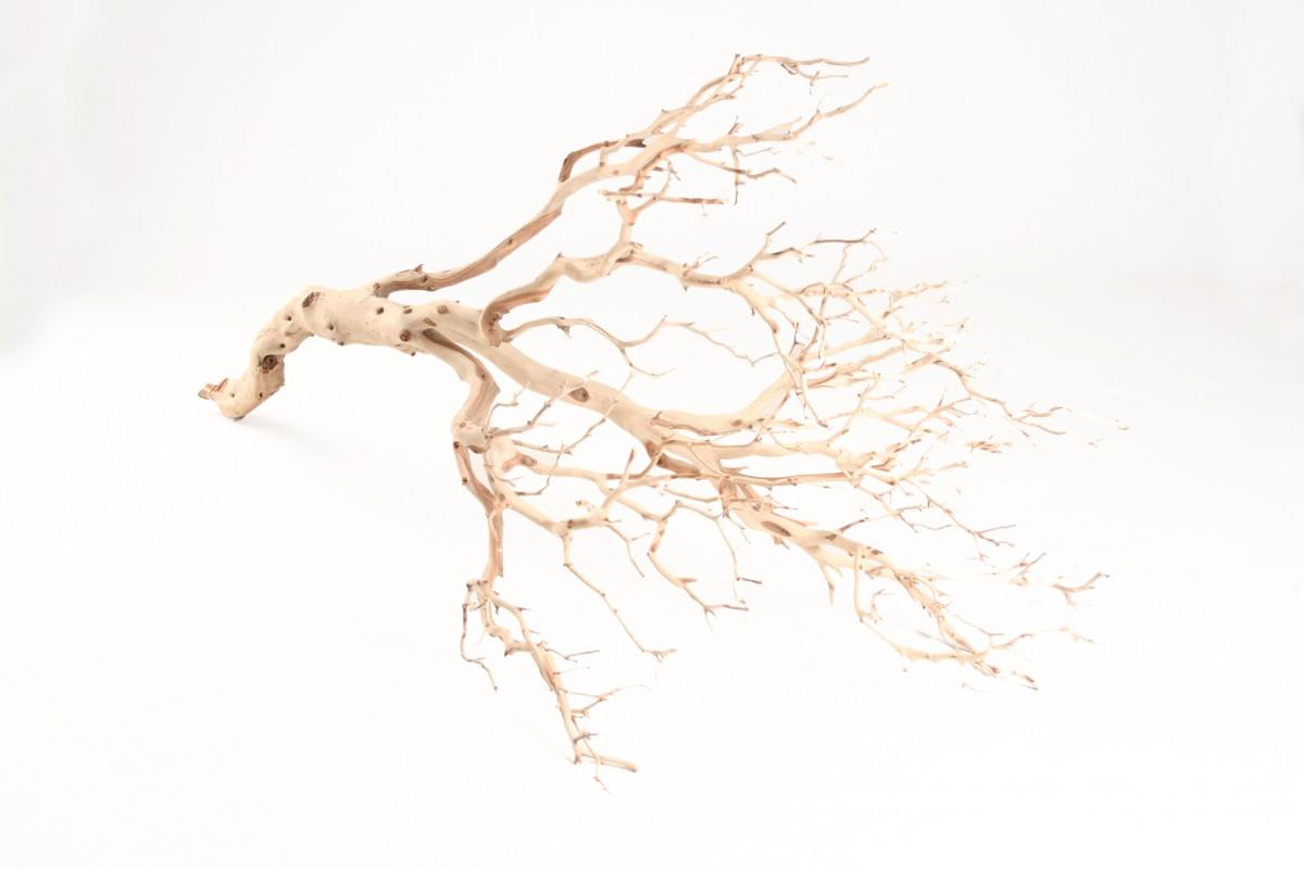 Manzanita Baum sandgestrahlt ca. 90cm hoch