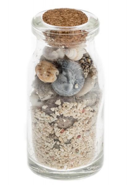 Flasche mit Muschel und Strandsand