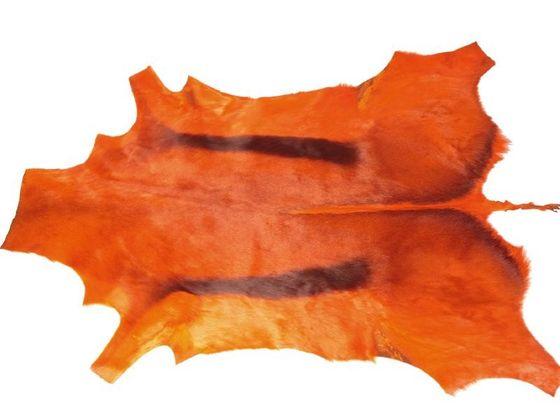 Springbockfell orange – Bild