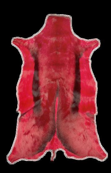 Springbockfell rot ca. 80-100cm | Antilopenfell – Bild 1