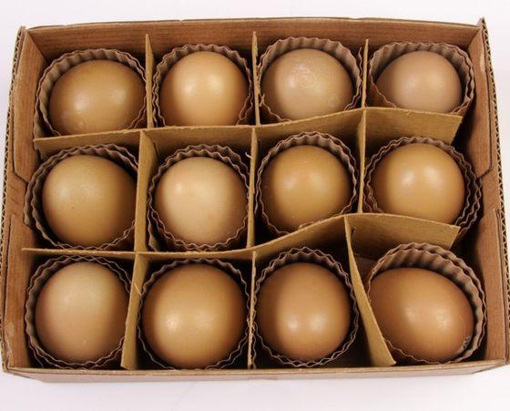 Fasan Eier natur braun 12 Stück – Bild 1