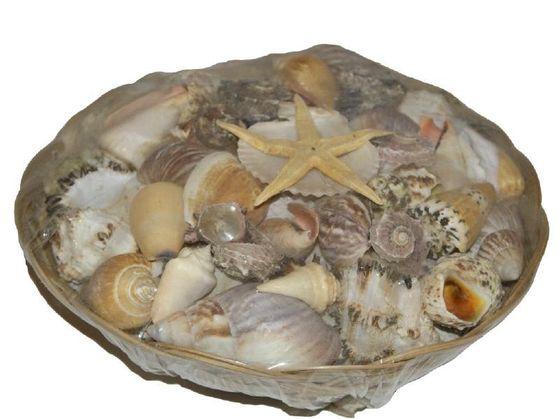 Muschelmix im Korb ca. 25cm, ca. 1kg – Bild
