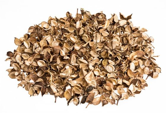 Cotton Pods natur 250g – Bild