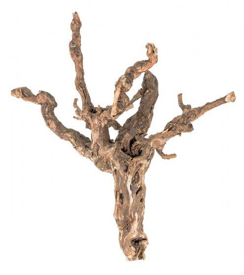 Weinrebe 40-45cm natur – Bild 1