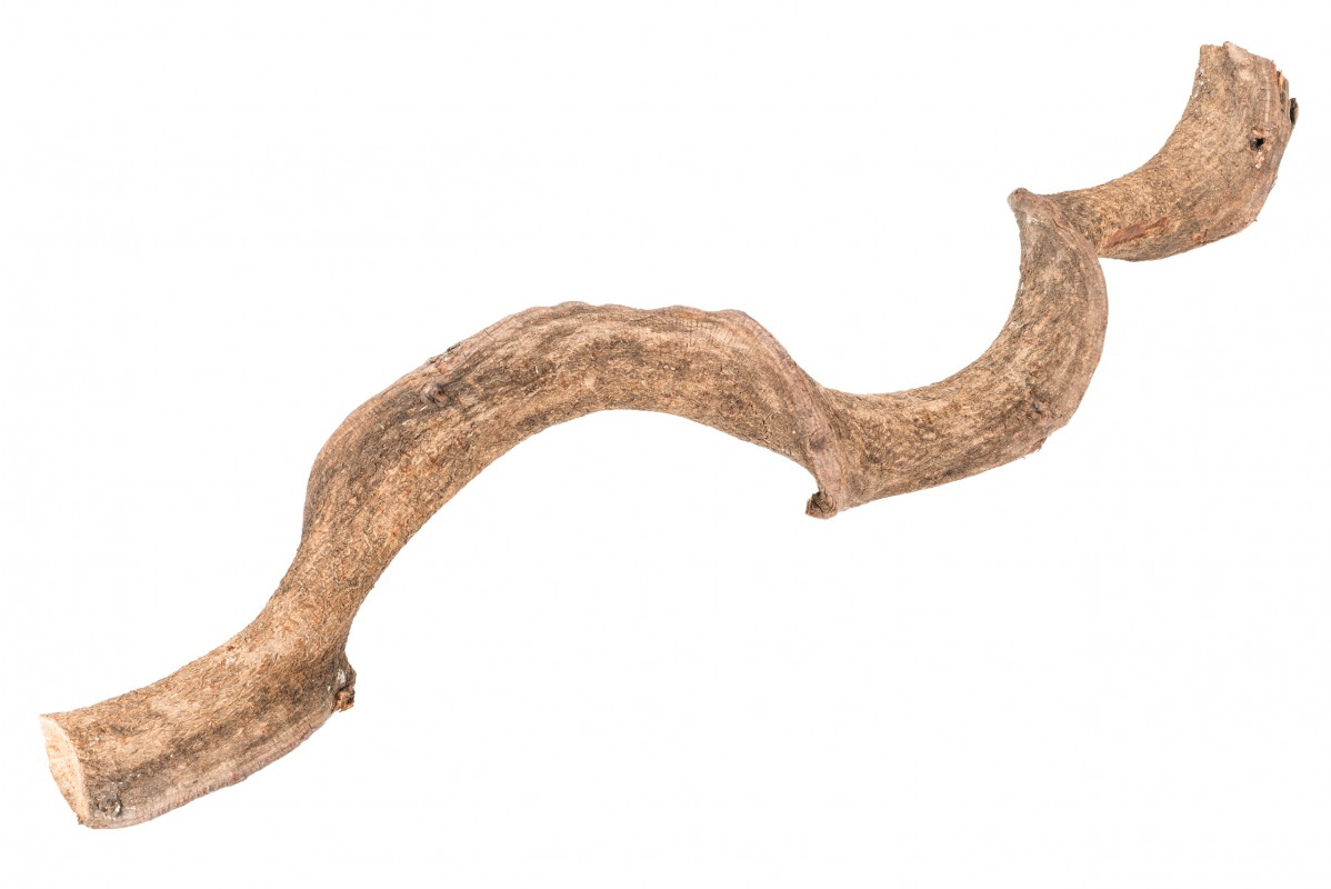 Drachen Liane natur 60cm 2-3cm