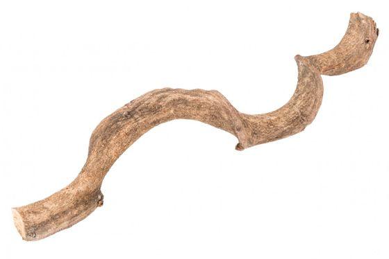 Drachen Liane natur 60cm 2-3cm – Bild