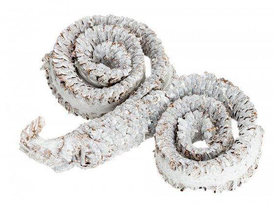 Palm Ring weiß ca. 10cm  – Bild 1