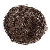 Clematis Nest 8cm