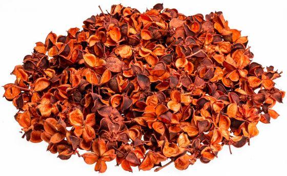 Cotton Pods orange 250g – Bild
