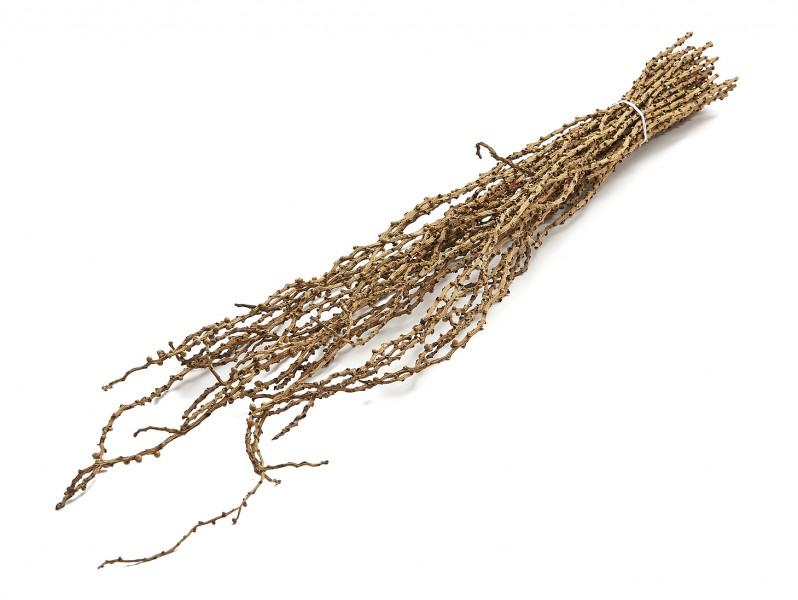 Bowty Zweige natur ca. 100cm 40Stk.