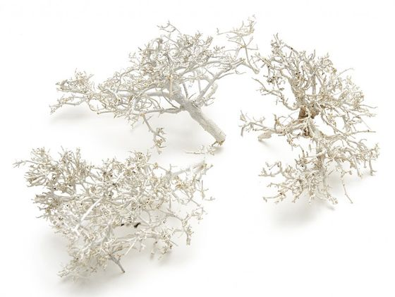 Dry Bush weiß 0,5kg – Bild
