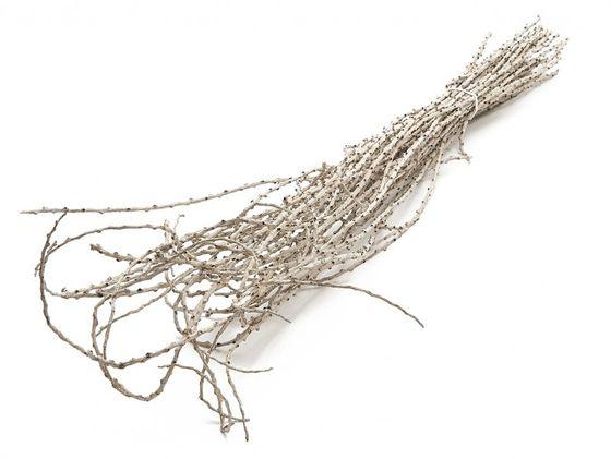 Bowty Zweige weiß ca. 100cm 40Stk. – Bild