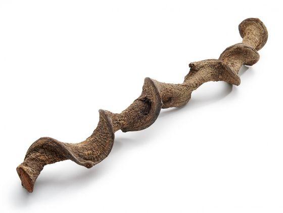 Drachen Liane natur 200cm – Bild