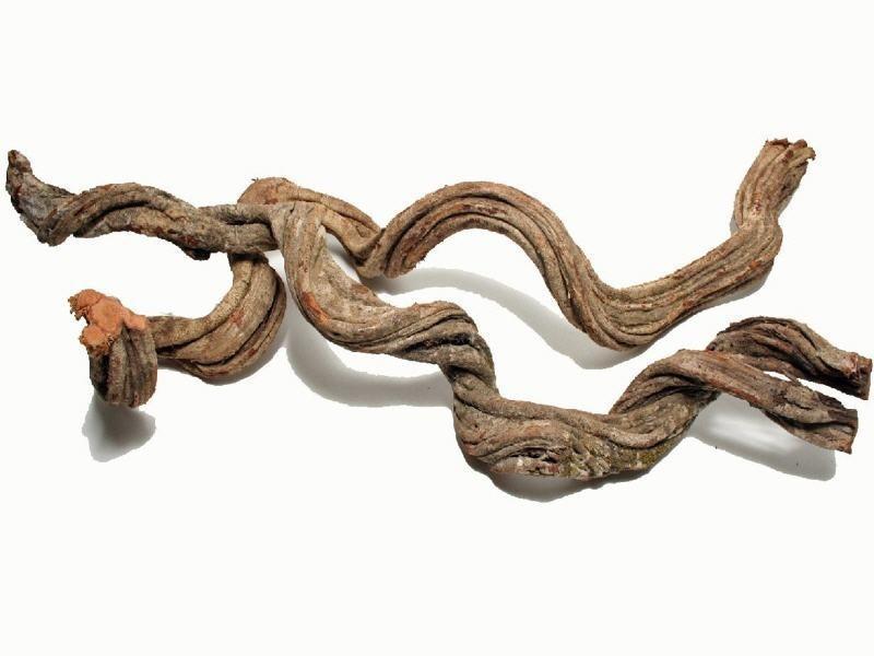 Cipo Rosca Liane ca. 200x17cm+