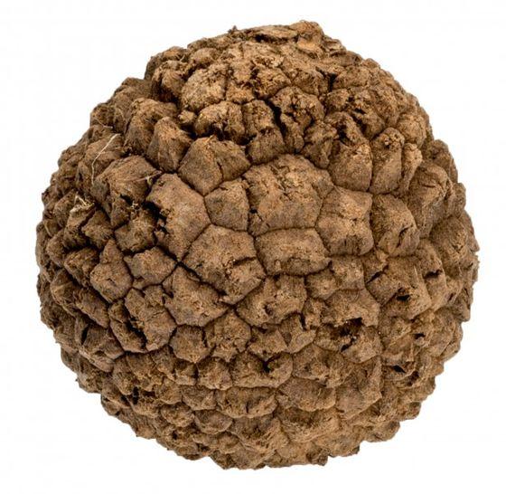 Bola natal natur ca. 5-6cm – Bild