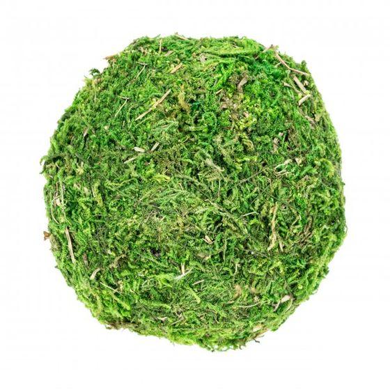 Moos Ball Ø 10cm – Bild