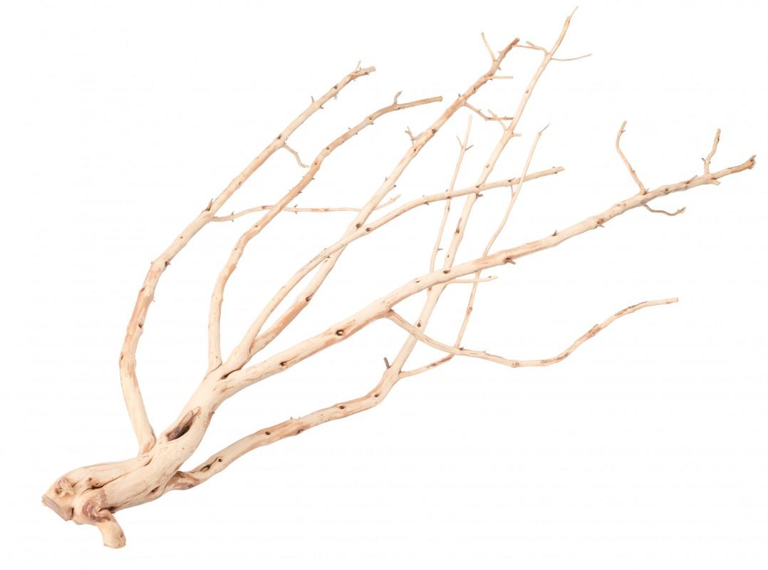 Deko Wurzel Asar Wit ca. 50-70cm