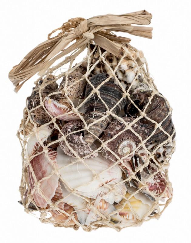 Muschelmix im Netz mit 0,5kg