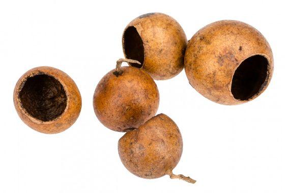 Kuchipal ca. 3-5cm 100 Stück  – Bild 2