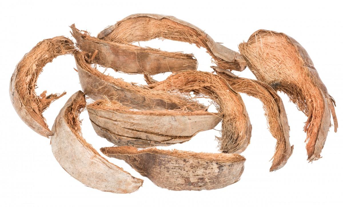 Kokosschale natur ca. 20-30cm 0,5kg