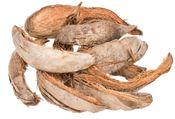 Kokosschale natur ca. 20-30cm 0,5kg – Bild 2