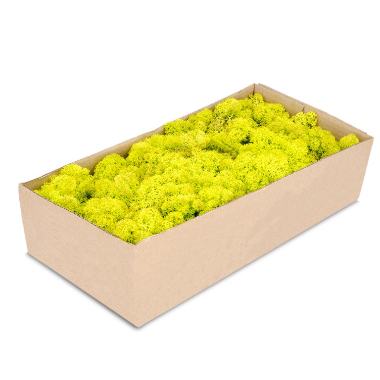 Islandmoos apfelgrün 500g