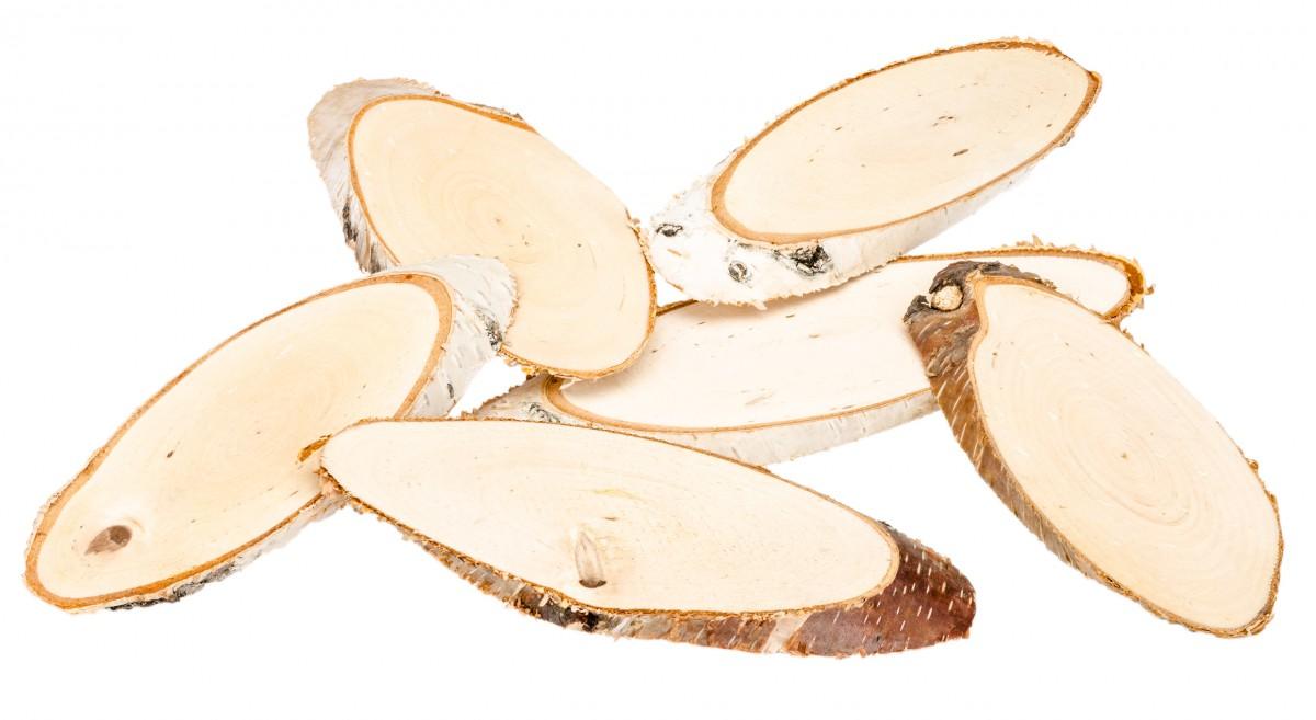 Birkenscheiben oval 15-20cm 6 Stück